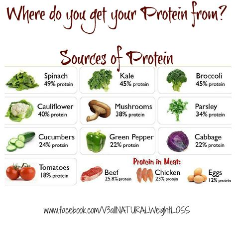 sources of protein home ideazz sources of protein