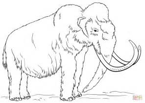 Wooly Mammoth Coloring Page woolly mammoth coloring page free printable coloring pages