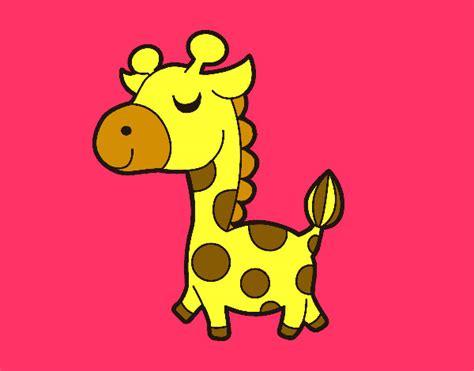 imagenes de jirafas en ingles dibujos de jirafas mas visitados para colorear dibujos net