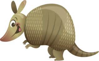 armadillo cliparts cliparts and others art inspiration