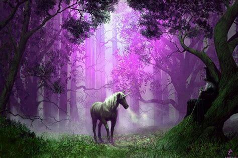 imagenes bonitas bosque de fantasias imagen de escritorio unicornio bosque