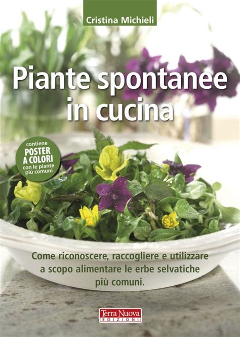 piante spontanee in cucina piante spontanee in cucina