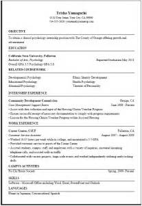 sle resume for government best resume exle