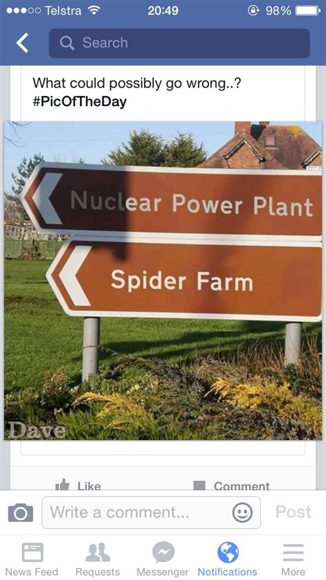 Power Lifier Black Spider the 25 best spider puns ideas on 3 o clock