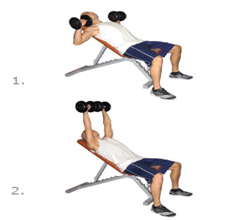 dumbbell exercises on bench step exercises and fitness chest exercises step 4