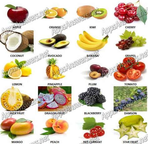 fruit quiz guess what fruit quiz answers apps answers net