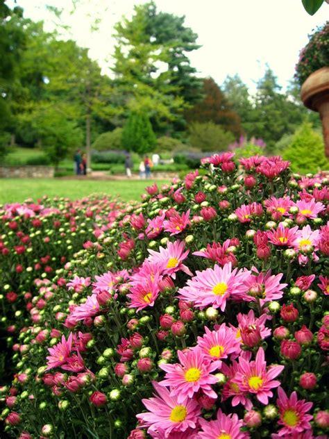 philadelphia botanical garden longwood gardens botanic garden in philadelphia
