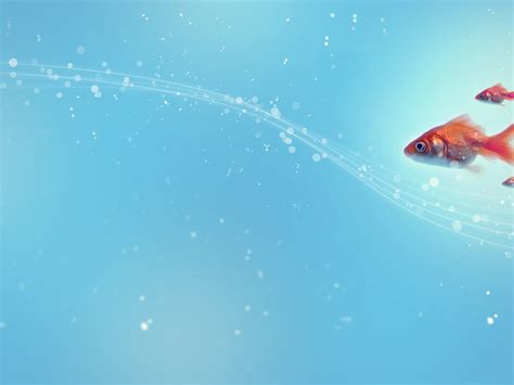 Fish Backgrounds Wallpaper Cave Fish Ppt Templates Free