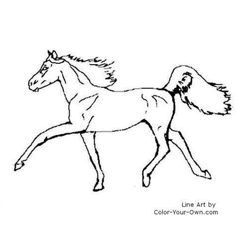 arabian horse coloring pages www pixshark com images