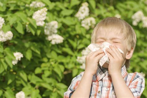 has allergies allergies archives parenting journals