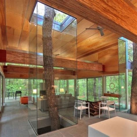 incredible houses 18 incredible houses with trees in them