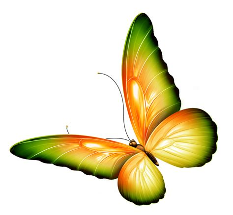 free butterfly clipart free flowers and butterflies clipart free clip