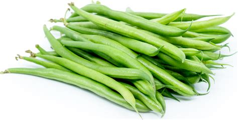 Color Of The Year by French Beans Information Recipes And Facts