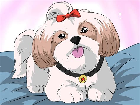how to bathe a puppy shih tzu how to bathe a shih tzu puppy with pictures wikihow