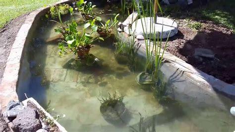 estanque jardin estanque de jardin con peces koi como construir