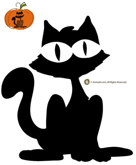 cool pumpkin templates best 25 cat pumpkin carving ideas on pumpkin