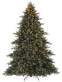 Aspen silver fir christmas trees balsam hill