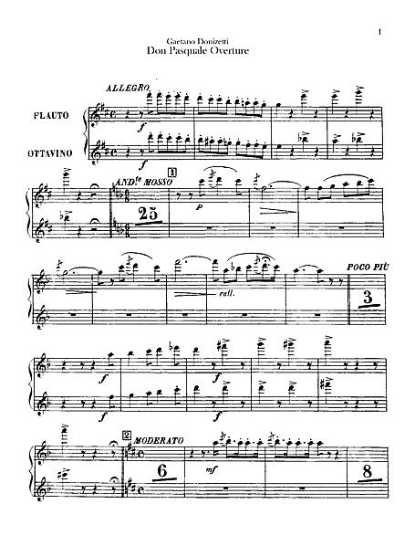 the piccolo is in what section of an orchestra don pasquale flute piccolo part flute piccolo sheet
