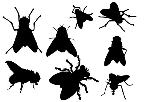 vector free free fly silhouette vector free vector