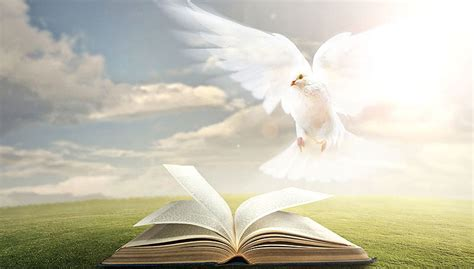 comfort of the holy spirit do you know who the holy spirit is step into the story