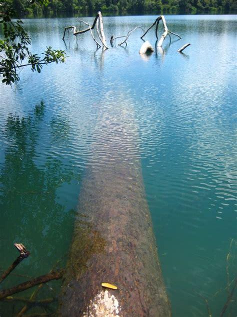 Dragonfly Planner boeng yaek laom crater lake ban lung cambodia