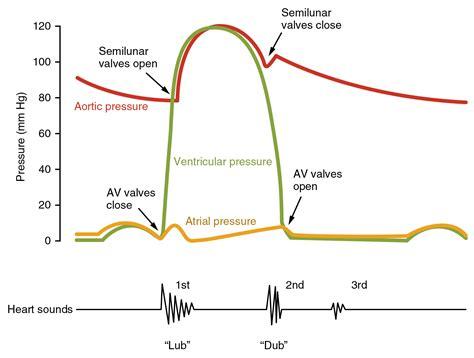cardiac cycle pressures   heart teachmephysiology