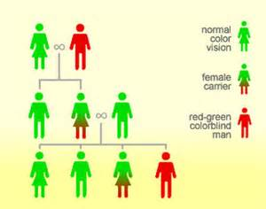 Is Blindness Genetic About This Disease Color Blindness