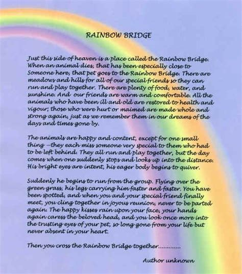 rainbow bridge poem for dogs original rainbow bridge poem original version rainbow bridge poem pet loss
