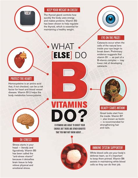 supplement infographic health nutrition infographics explore supplements