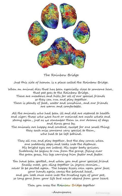 rainbow bridge poem for dogs 17 best ideas about rainbow bridge poem on rainbow bridge loss