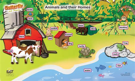 their home animals and their homes chart www imgkid com the image