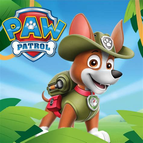 what of is tracker from paw patrol nickalive meet tracker the quot paw patrol quot recruit