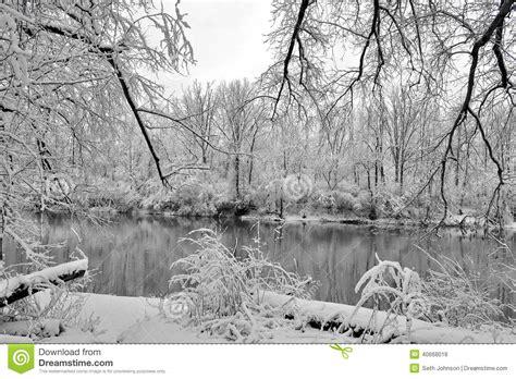 Imagenes De Invierno Triste | invierno triste foto de archivo imagen 40668018