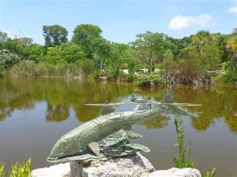 Key West Tropical Forest And Botanical Garden Creative Artwork Picture Of Key West Tropical Forest And Botanical Garden Key West Tripadvisor