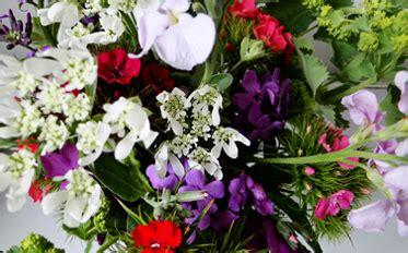wholesale flowers orange county fuji wholesale flowers