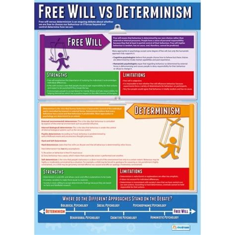 Free Will Vs Determinism Essay by Free Will Vs Determinism Psychology Essay Mfacourses363 Web Fc2