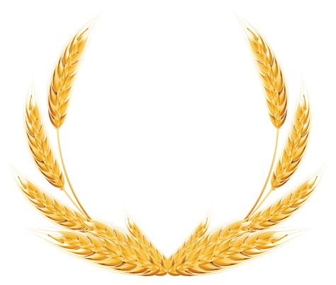 wheat clip wheat png images free