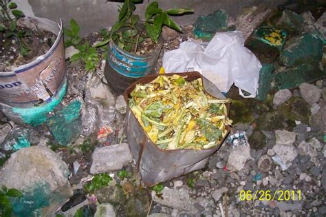 Kitchen Trash Can Ideas gogreen reducing biodegradable waste