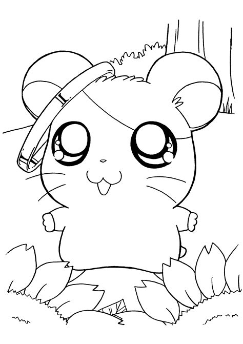 coloring page hamtaro coloring pages 145