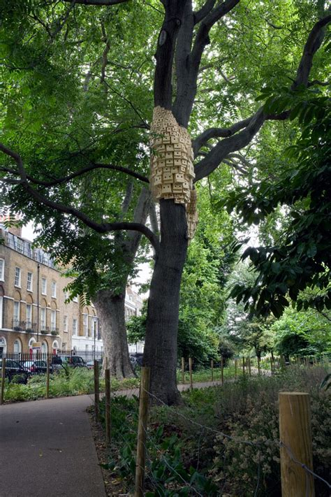 cluster exeter 9 tree clusters of birdhouses fantastically wrap around trees