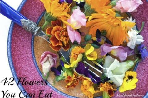 42 flowers you can eat treehugger 42 flowers you can eat homestead survival