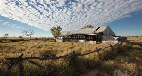 Australian Shearing Sheds by Around The Shearing Sheds Australian Geographic