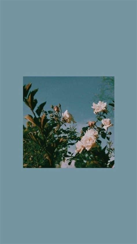 wallpaper simple aesthetic phone flowers flower