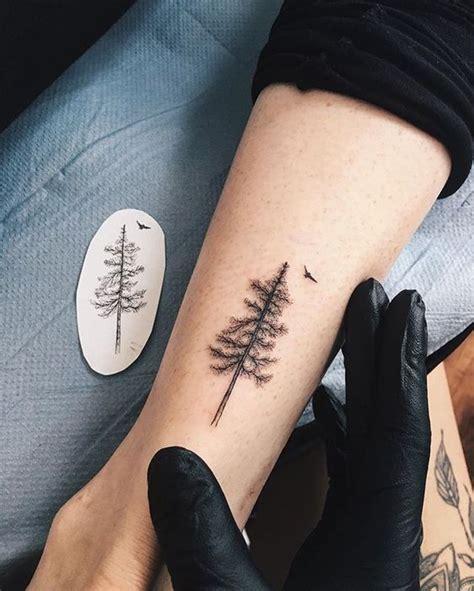 tatuaggi con pini e abeti idee per ispirarsi e significato