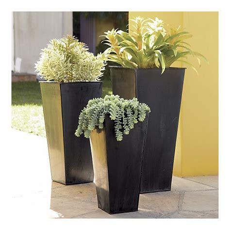 Zinc Garden Planters by Best 25 Zinc Planters Ideas On Potted Trees