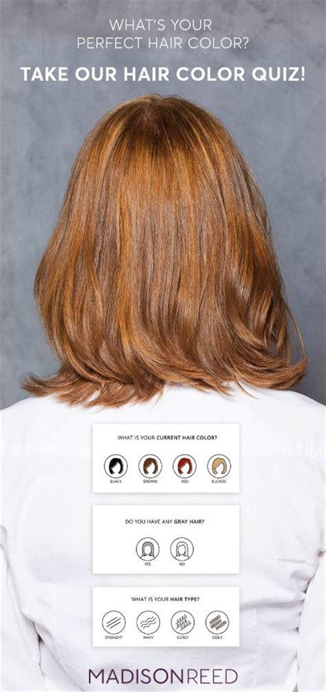 color quizzes 25 best hair color quiz ideas on no ammonia