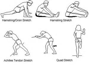 Best Office Chair For Lower Back Pain 14 Best Images About Stretch It Out On Pinterest Posts