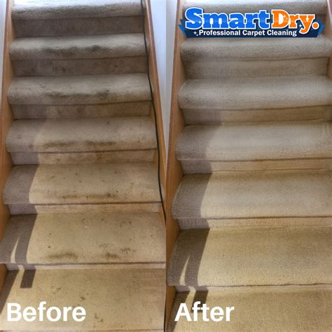 area rug cleaning san diego rug cleaning san diego area rug carpet cleaners smart