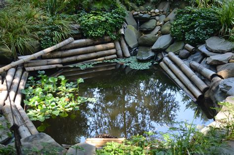 Small Garden Pond Design Ideas Things To Consider For A Pond In Your Garden