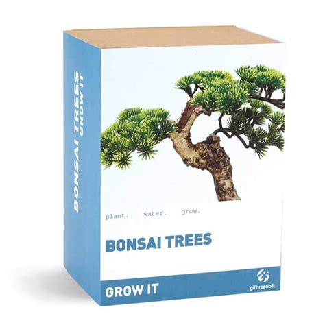 bonsai the beginner s guide to cultivate grow shape and show your bonsai includes history styles of bonsai types of bonsai trees trimming wiring repotting and watering books grow it bonsai tree buy from prezzybox